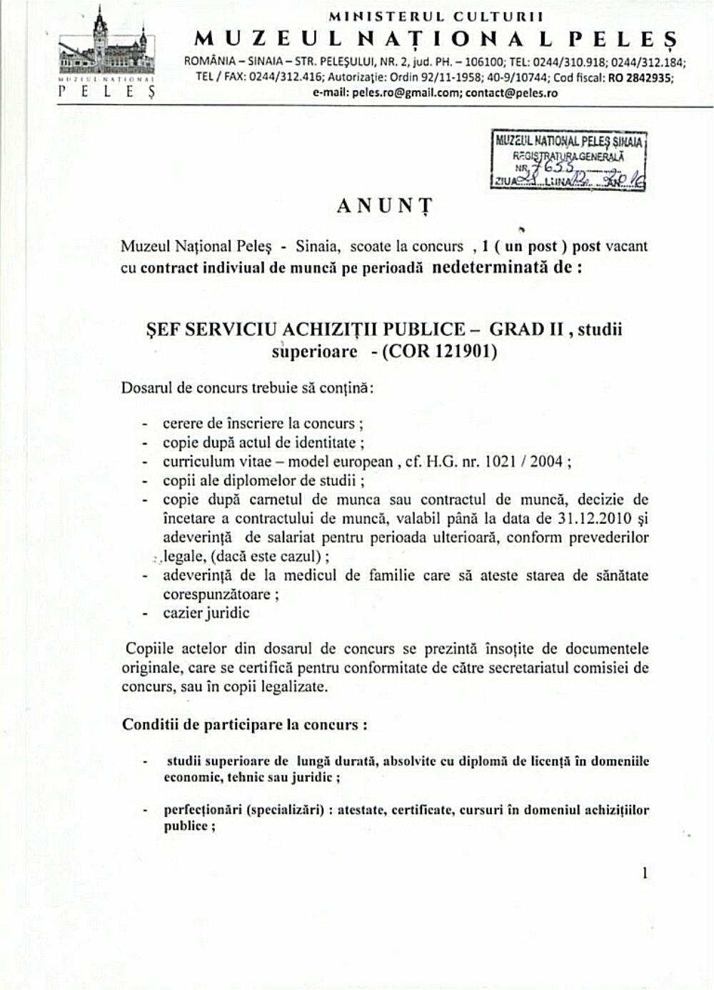 anunt-sef-serv-achiz-publ_-pag_-1-970x1344